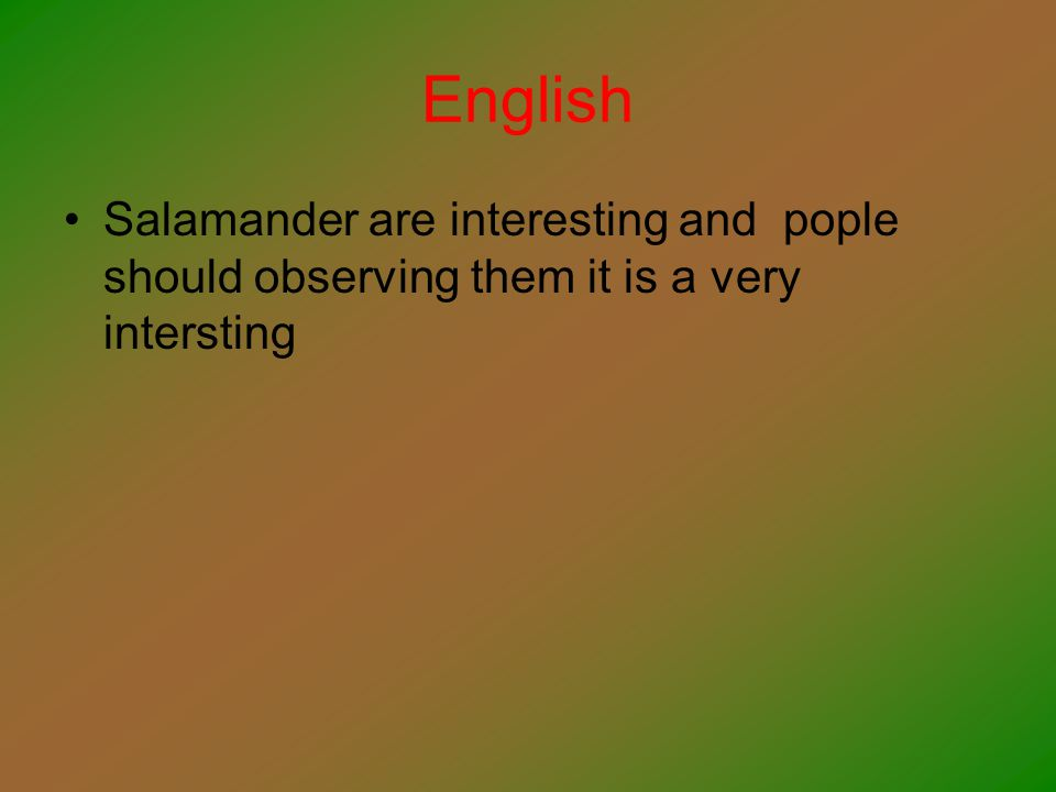 English Salamander are interesting and pople should observing them it is a very intersting