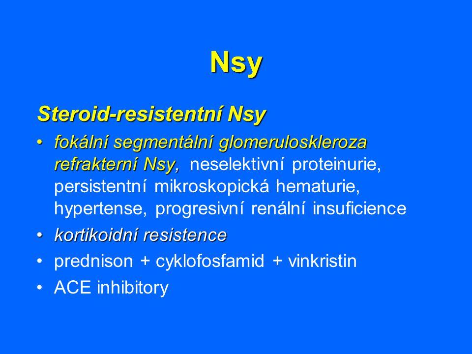 Nsy Steroid-resistentní Nsy fokální segmentální glomeruloskleroza refrakterní Nsy,fokální segmentální glomeruloskleroza refrakterní Nsy, neselektivní