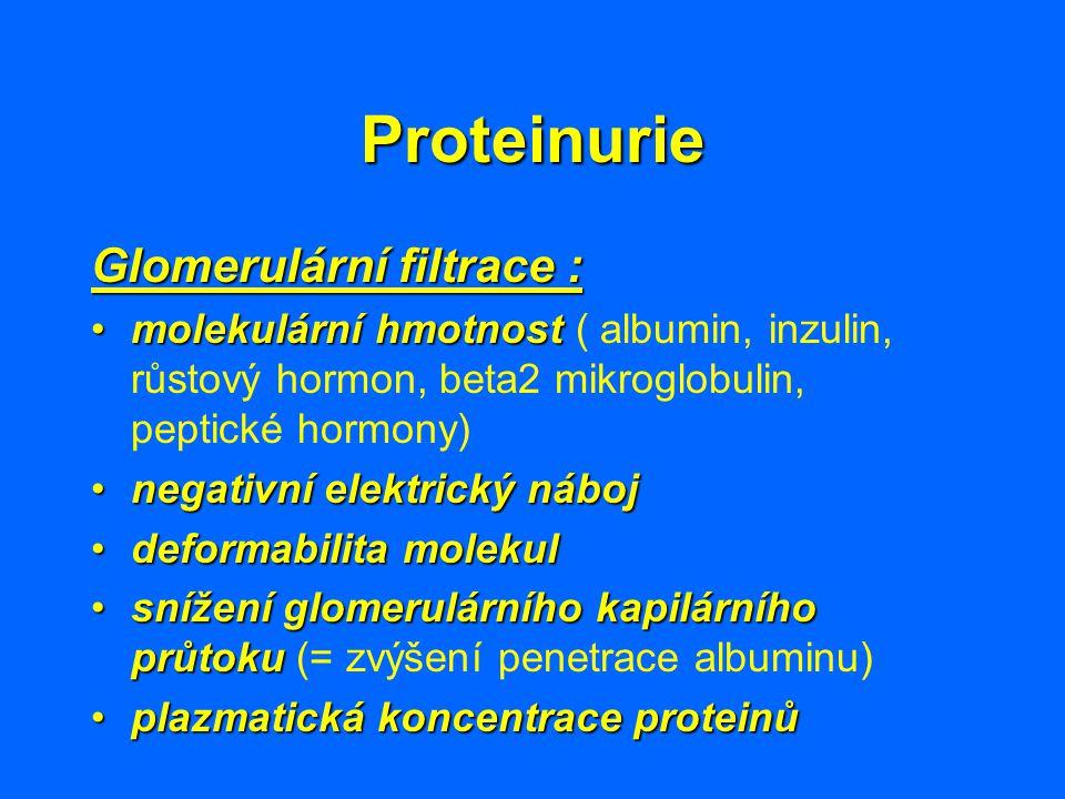 Proteinurie Glomerulární filtrace : molekulární hmotnostmolekulární hmotnost ( albumin, inzulin, růstový hormon, beta2 mikroglobulin, peptické hormony