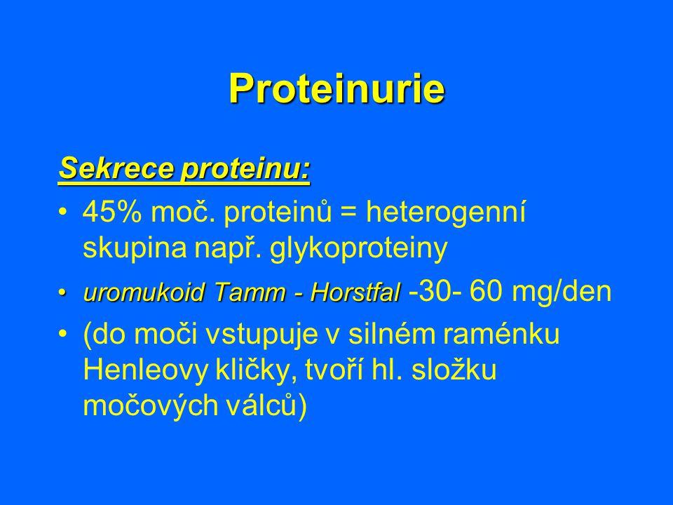 Proteinurie Sekrece proteinu: 45% moč. proteinů = heterogenní skupina např. glykoproteiny uromukoid Tamm - Horstfaluromukoid Tamm - Horstfal -30- 60 m