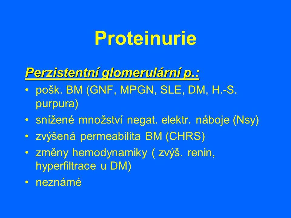 Proteinurie Perzistentní glomerulární p.: pošk. BM (GNF, MPGN, SLE, DM, H.-S. purpura) snížené množství negat. elektr. náboje (Nsy) zvýšená permeabili
