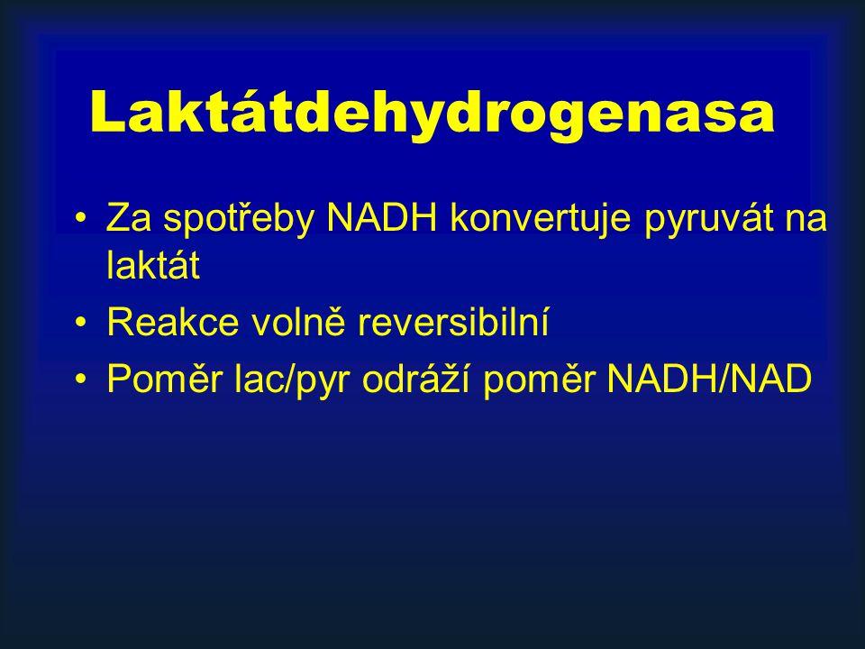 Laktátdehydrogenasa Za spotřeby NADH konvertuje pyruvát na laktát Reakce volně reversibilní Poměr lac/pyr odráží poměr NADH/NAD