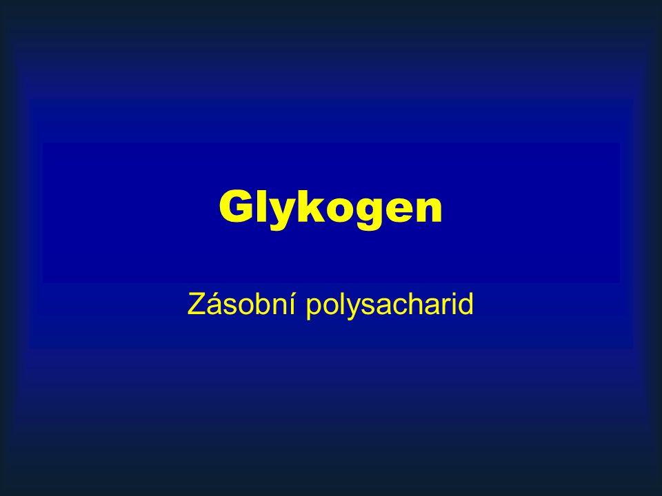 Glykogen Zásobní polysacharid