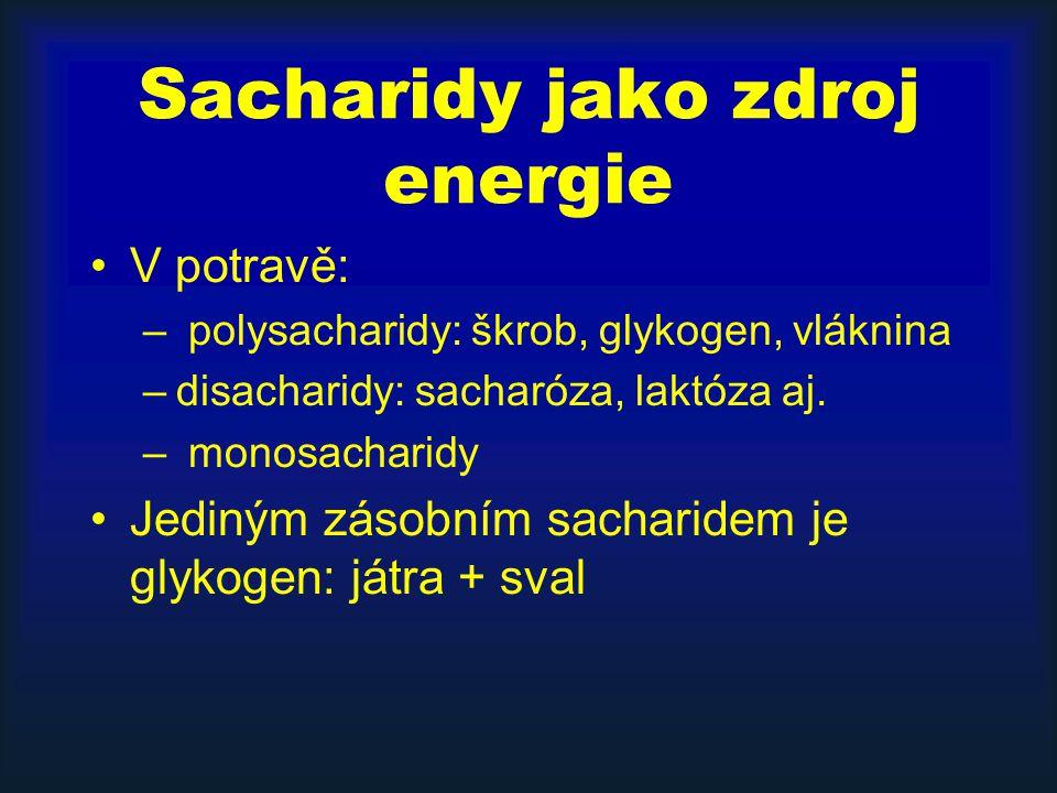 Sacharidy jako zdroj energie V potravě: – polysacharidy: škrob, glykogen, vláknina –disacharidy: sacharóza, laktóza aj. – monosacharidy Jediným zásobn