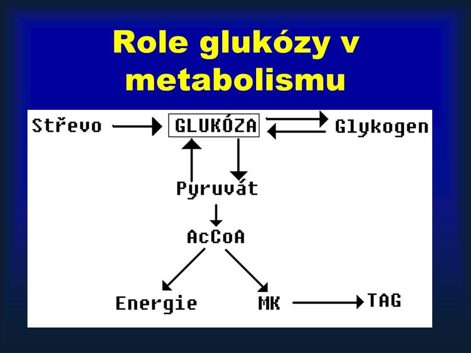 Role glukózy v metabolismu