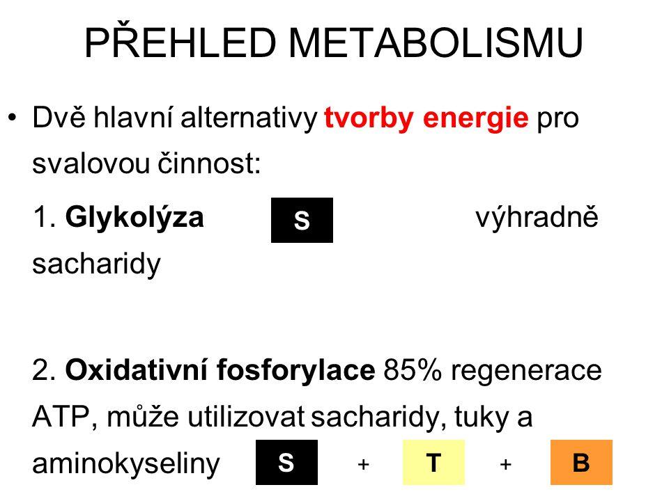 Dvě hlavní alternativy tvorby energie pro svalovou činnost: 1. Glykolýza výhradně sacharidy 2. Oxidativní fosforylace 85% regenerace ATP, může utilizo