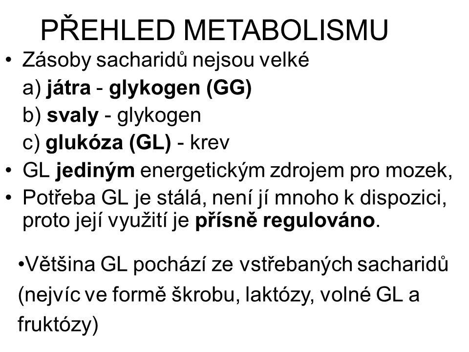 Zásoby sacharidů nejsou velké a) játra - glykogen (GG) b) svaly - glykogen c) glukóza (GL) - krev GL jediným energetickým zdrojem pro mozek, Potřeba GL je stálá, není jí mnoho k dispozici, proto její využití je přísně regulováno.