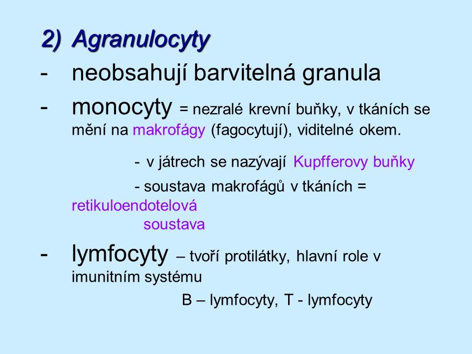2)Agranulocyty -neobsahují barvitelná granula -monocyty = nezralé krevní buňky, v tkáních se mění na makrofágy (fagocytují), viditelné okem.