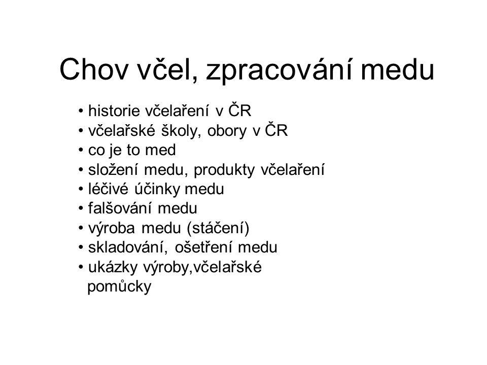 HISTORIE Staří Čechové rádi pili medovinu, jak potvrzuje Kronika Dalimilova.