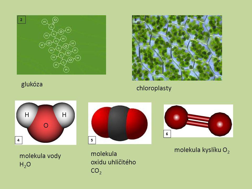glukóza 2 chloroplasty 3 molekula vody H 2 O molekula oxidu uhličitého CO 2 molekula kyslíku O 2 45 6
