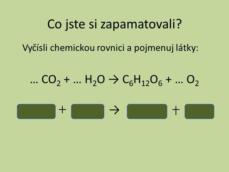 Co jste si zapamatovali? Vyčísli chemickou rovnici a pojmenuj látky: … CO 2 + … H 2 O → C 6 H 12 O 6 + … O 2 →