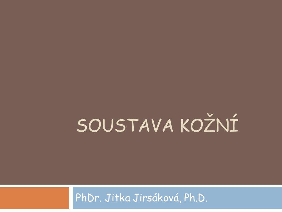 SOUSTAVA KOŽNÍ PhDr. Jitka Jirsáková, Ph.D.
