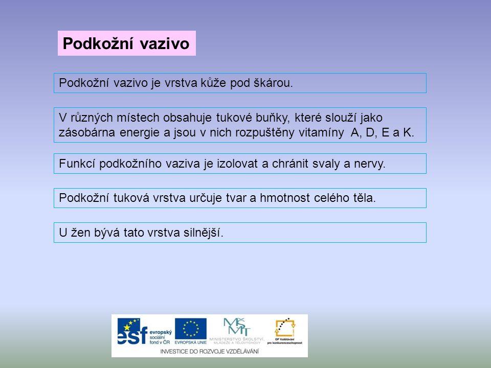 S humorem a nadsázkou o tom, jak žít zdravě aneb kapky nejen pro hypochondry: Vlasy http://www.ceskatelevize.cz/porady/1025095048-prvni- pomoc/400216100051008-vlasy/ S humorem a nadsázkou o tom, jak žít zdravě aneb kapky nejen pro hypochondry: Paraziti http://www.ceskatelevize.cz/porady/1025095048-prvni- pomoc/400216100051012-paraziti/ Zajímavá videa o vlasech nebo parazitech najdeš na stránkách: