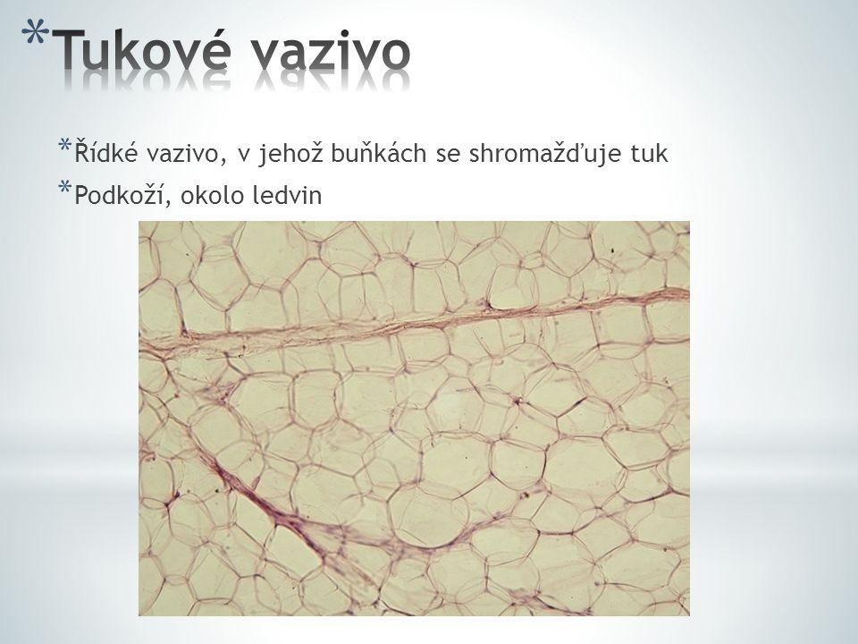 * Řídké vazivo, v jehož buňkách se shromažďuje tuk * Podkoží, okolo ledvin