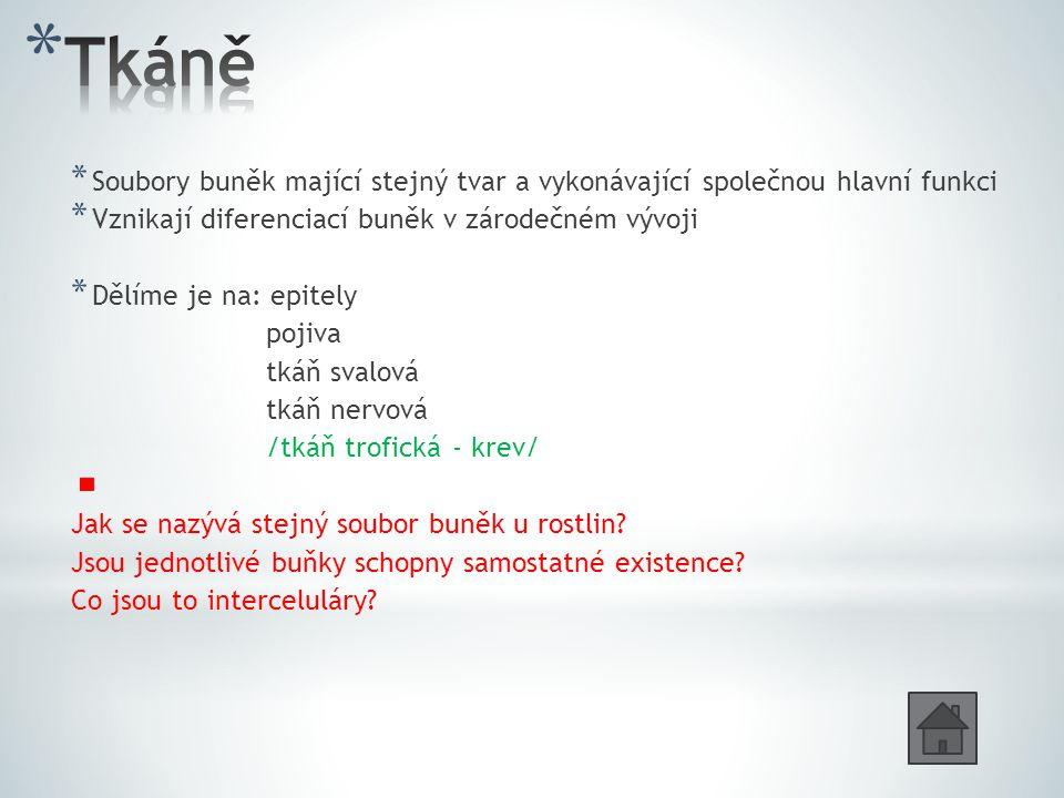 * Soubory buněk mající stejný tvar a vykonávající společnou hlavní funkci * Vznikají diferenciací buněk v zárodečném vývoji * Dělíme je na: epitely pojiva tkáň svalová tkáň nervová /tkáň trofická - krev/ Jak se nazývá stejný soubor buněk u rostlin.