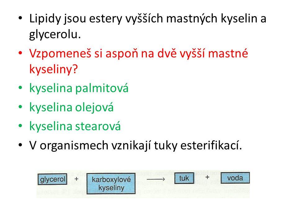 Lipidy jsou estery vyšších mastných kyselin a glycerolu. Vzpomeneš si aspoň na dvě vyšší mastné kyseliny? kyselina palmitová kyselina olejová kyselina
