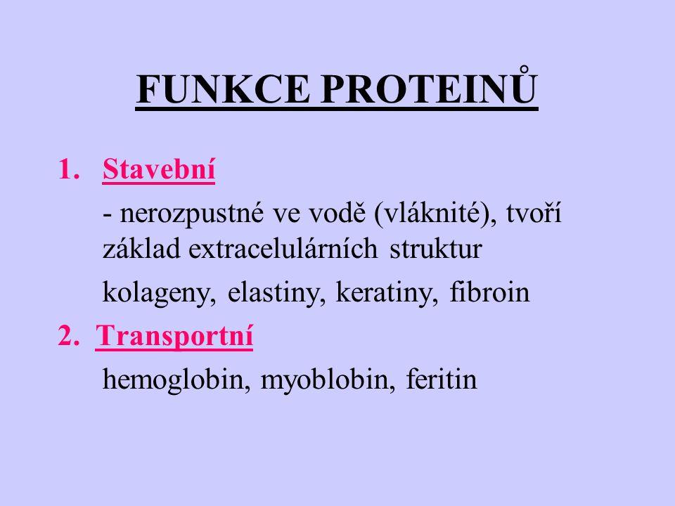 FUNKCE PROTEINŮ 1.Stavební - nerozpustné ve vodě (vláknité), tvoří základ extracelulárních struktur kolageny, elastiny, keratiny, fibroin 2.