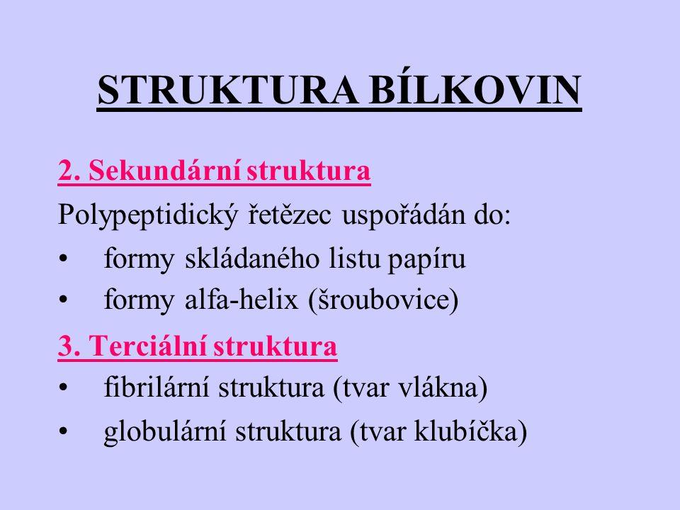STRUKTURA BÍLKOVIN 2.