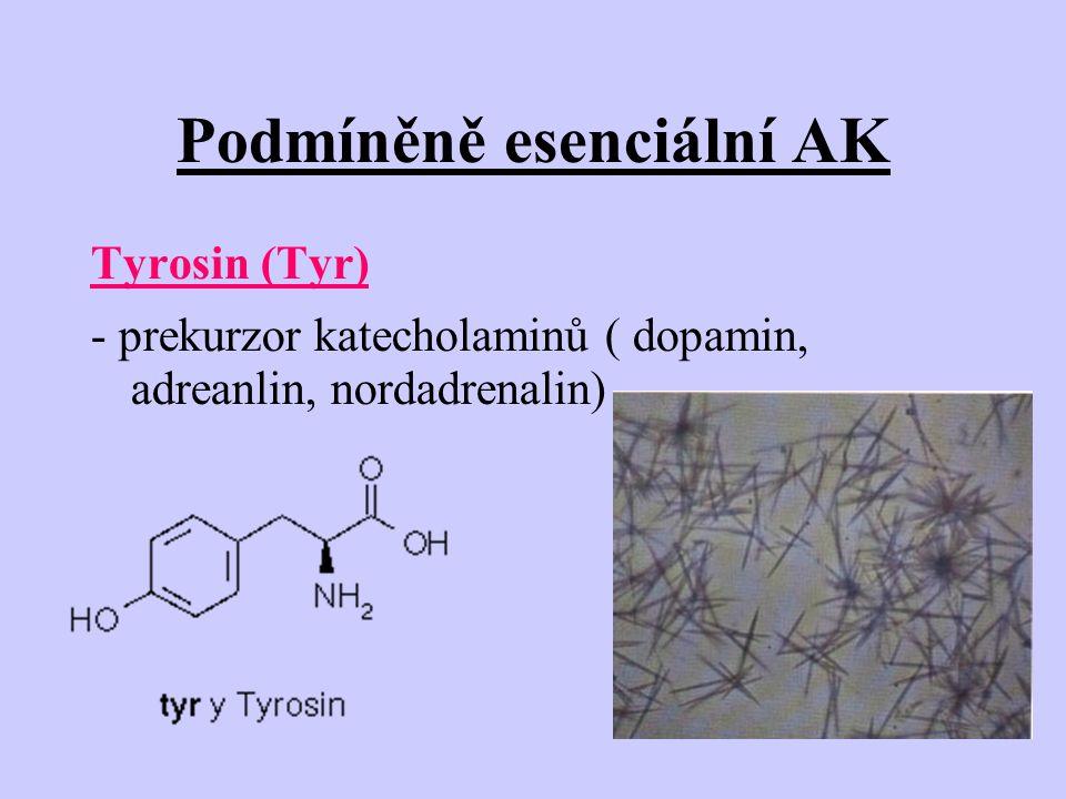 Podmíněně esenciální AK Tyrosin (Tyr) - prekurzor katecholaminů ( dopamin, adreanlin, nordadrenalin)