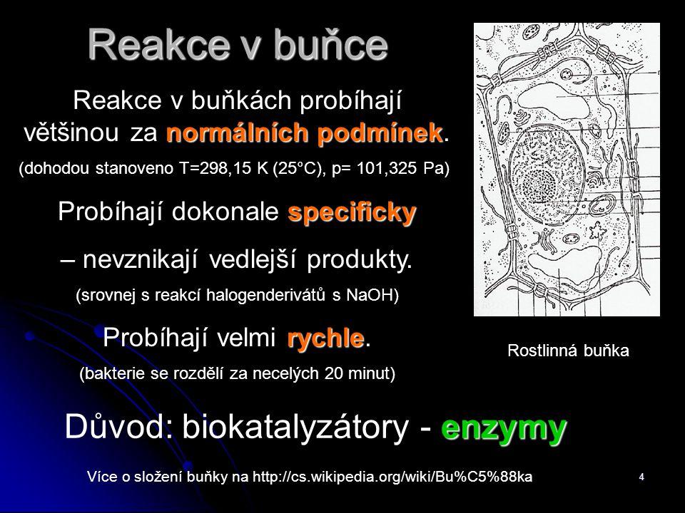 4 Reakce v buňce Více o složení buňky na http://cs.wikipedia.org/wiki/Bu%C5%88ka Rostlinná buňka normálních podmínek Reakce v buňkách probíhají většinou za normálních podmínek.