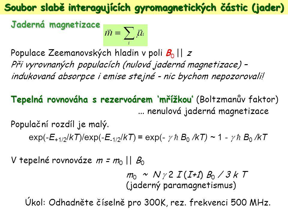 Jaderná magnetizace Populace Zeemanovských hladin v poli B 0 || z Při vyrovnaných populacích (nulová jaderná magnetizace) – indukovaná absorpce i emis