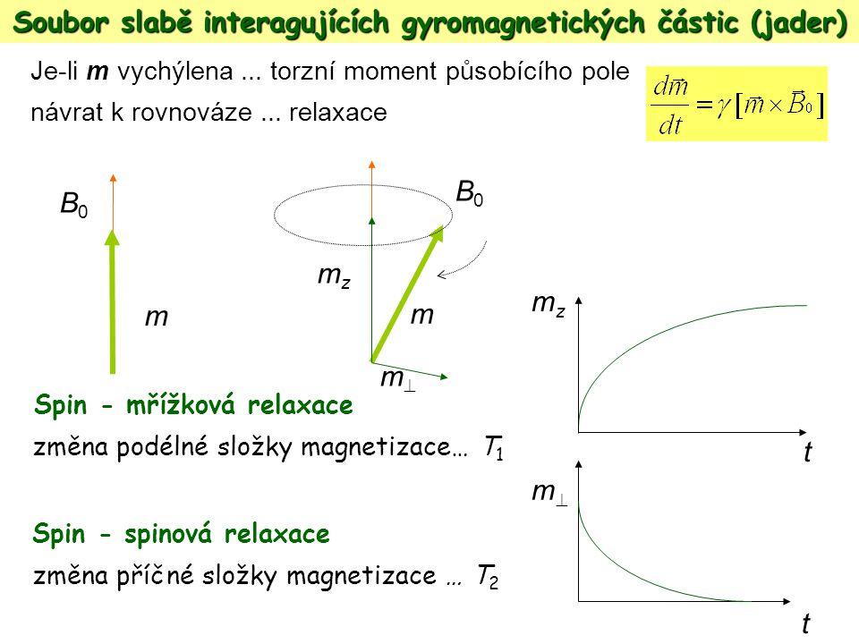 Spin - mřížková relaxace změna podélné složky magnetizace… T 1 Spin - spinová relaxace změna příčné složky magnetizace … T 2 t mzmz t mm m B0B0 mzmz