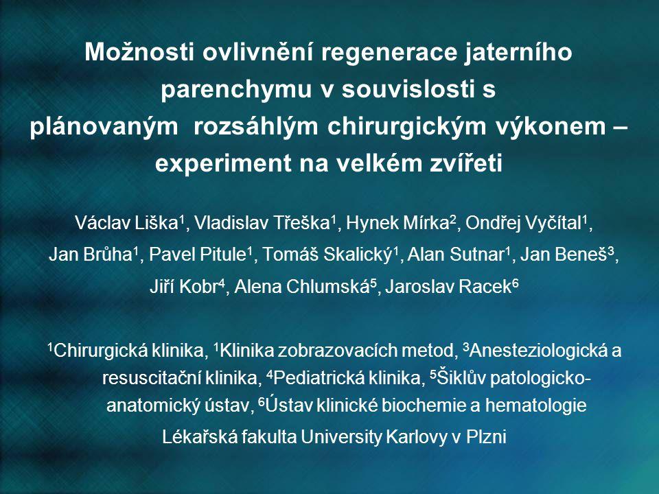 Možnosti ovlivnění regenerace jaterního parenchymu v souvislosti s plánovaným rozsáhlým chirurgickým výkonem – experiment na velkém zvířeti Václav Liš