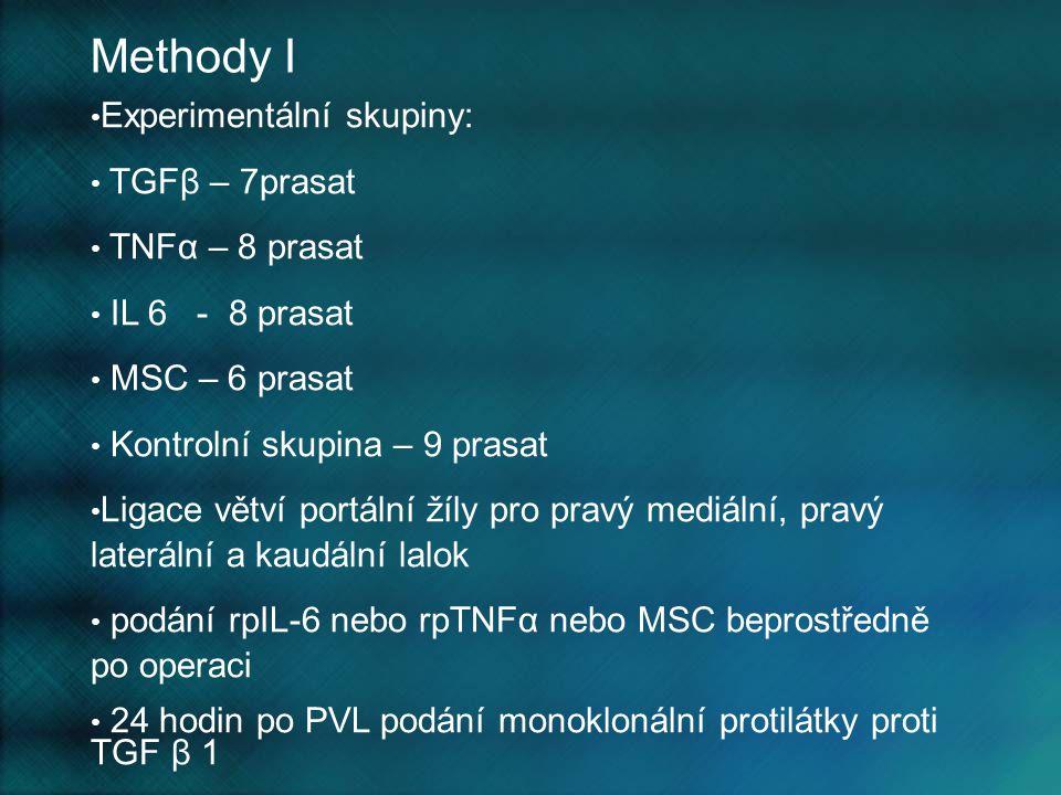 Methody I Experimentální skupiny: TGFβ – 7prasat TNFα – 8 prasat IL 6 - 8 prasat MSC – 6 prasat Kontrolní skupina – 9 prasat Ligace větví portální žíl