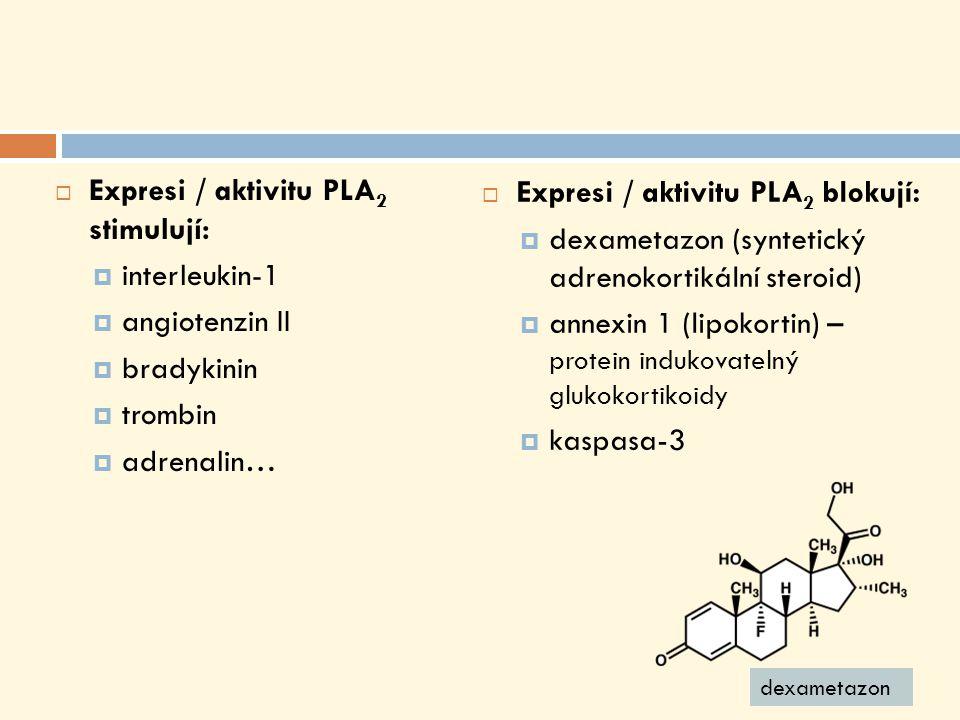 Expresi / aktivitu PLA 2 stimulují:  interleukin-1  angiotenzin II  bradykinin  trombin  adrenalin…  Expresi / aktivitu PLA 2 blokují:  dexametazon (syntetický adrenokortikální steroid)  annexin 1 (lipokortin) – protein indukovatelný glukokortikoidy  kaspasa-3 dexametazon