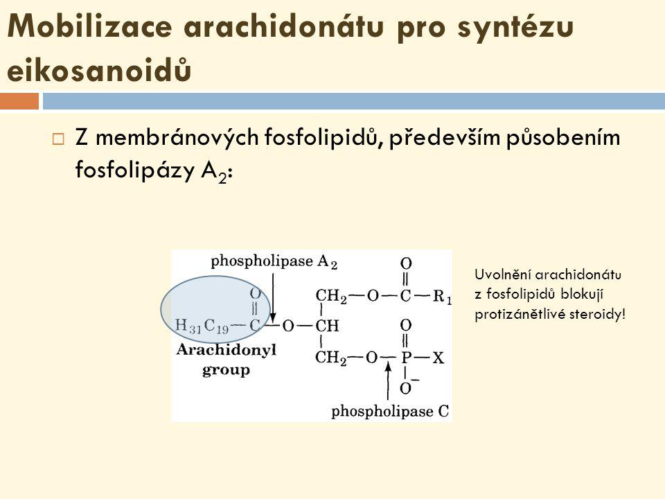 Mobilizace arachidonátu pro syntézu eikosanoidů  Z membránových fosfolipidů, především působením fosfolipázy A 2 : Uvolnění arachidonát u z fosfolipidů blokují protizánětlivé steroidy!