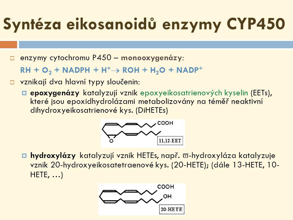Syntéza eikosanoidů enzymy CYP450  enzymy cytochromu P450 – monooxygenázy: RH + O 2 + NADPH + H +  ROH + H 2 O + NADP +  vznikají dva hlavní typy sloučenin:  epoxygenázy katalyzují vznik epoxyeikosatrienových kyselin (EETs), které jsou epoxidhydrolázami metabolizovány na téměř neaktivní dihydroxyeikosatrienové kys.