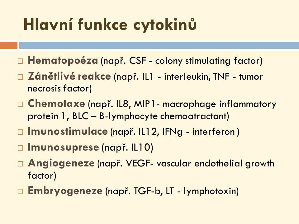 Hlavní funkce cytokinů  Hematopoéza (např.