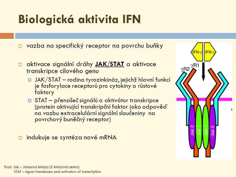 Biologická aktivita IFN  vazba na specifický receptor na povrchu buňky  aktivace signální dráhy JAK/STAT a aktivace transkripce cílového genu  JAK/STAT – rodina tyrozinkináz, jejichž hlavní funkcí je fosforylace receptorů pro cytokiny a růstové faktory  STAT – přenašeč signálů a aktivátor transkripce (protein aktivující transkripční faktor jako odpověď na vazbu extracelulární signální sloučeniny na povrchový buněčný receptor)  indukuje se syntéza nové mRNA Pozn: Jak – Janusova kináza (2 kinázová centra) STAT – signal transducers and activators of transcription