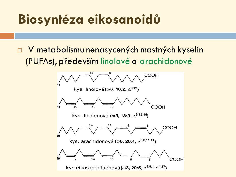 kyselina arachidonová  nenasycená mastná kyselina - 4 dvojné vazby = tetraenové kyseliny; série ω 6  důležitá složka fosfolipidů u živočichů  do těla se dostává jednak potravou (rostlinné oleje, arašídy, sója, kukuřice), jednak vzniká z esenciální nenasycené mastné kyseliny linolové ( ω 6) a linolenové ( ω 3)  prekurzor pro syntézu eikosanoidů  arachidonát pro jejich syntézu je uvolněn z buněčné membrány působením fosfolipázy A 2 (nebo fosfolipáza C)
