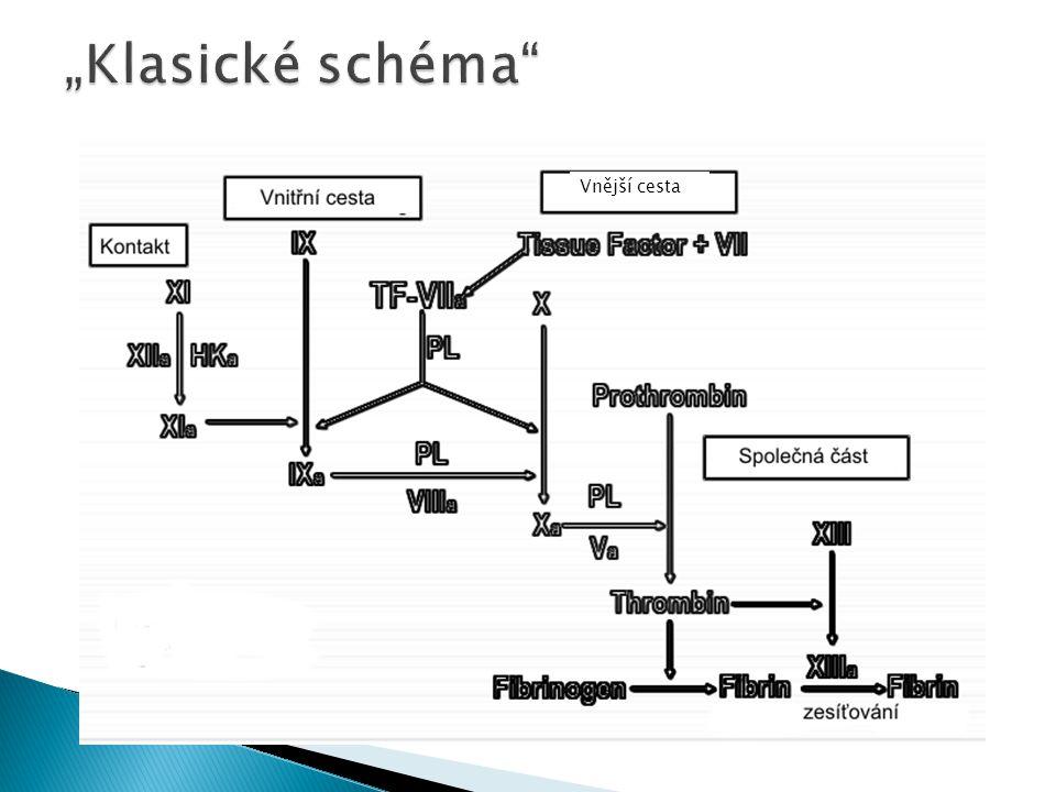 Plasma + Ca 2+ + Tkáňový tromboplastin → → Xa + V → IIa → sraženina Pokud je zvýšený pouze PT – deficience nebo inhibice faktoru VII Monitoring léčby Warfarinem