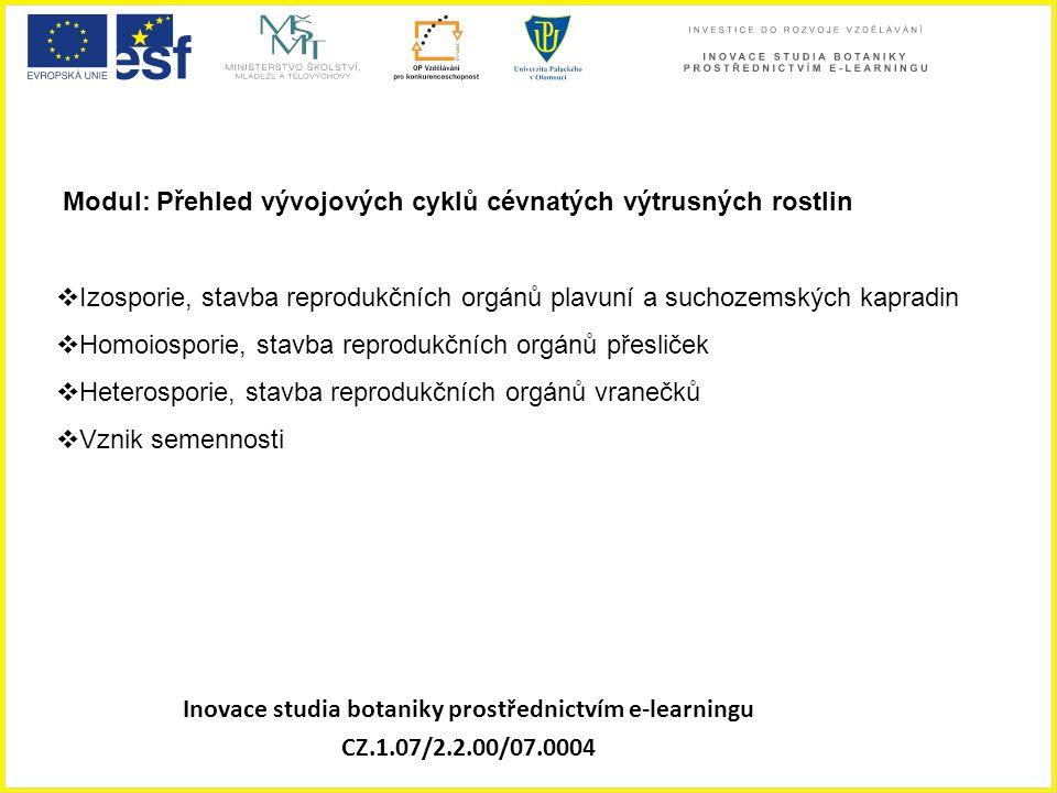 Inovace studia botaniky prostřednictvím e-learningu CZ.1.07/2.2.00/07.0004 Modul: Přehled vývojových cyklů cévnatých výtrusných rostlin  Izosporie, s