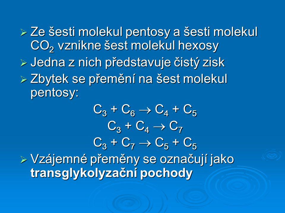  Ze šesti molekul pentosy a šesti molekul CO 2 vznikne šest molekul hexosy  Jedna z nich představuje čistý zisk  Zbytek se přemění na šest molekul