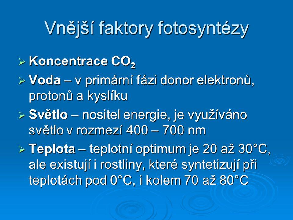 Vnější faktory fotosyntézy  Koncentrace CO 2  Voda – v primární fázi donor elektronů, protonů a kyslíku  Světlo – nositel energie, je využíváno svě