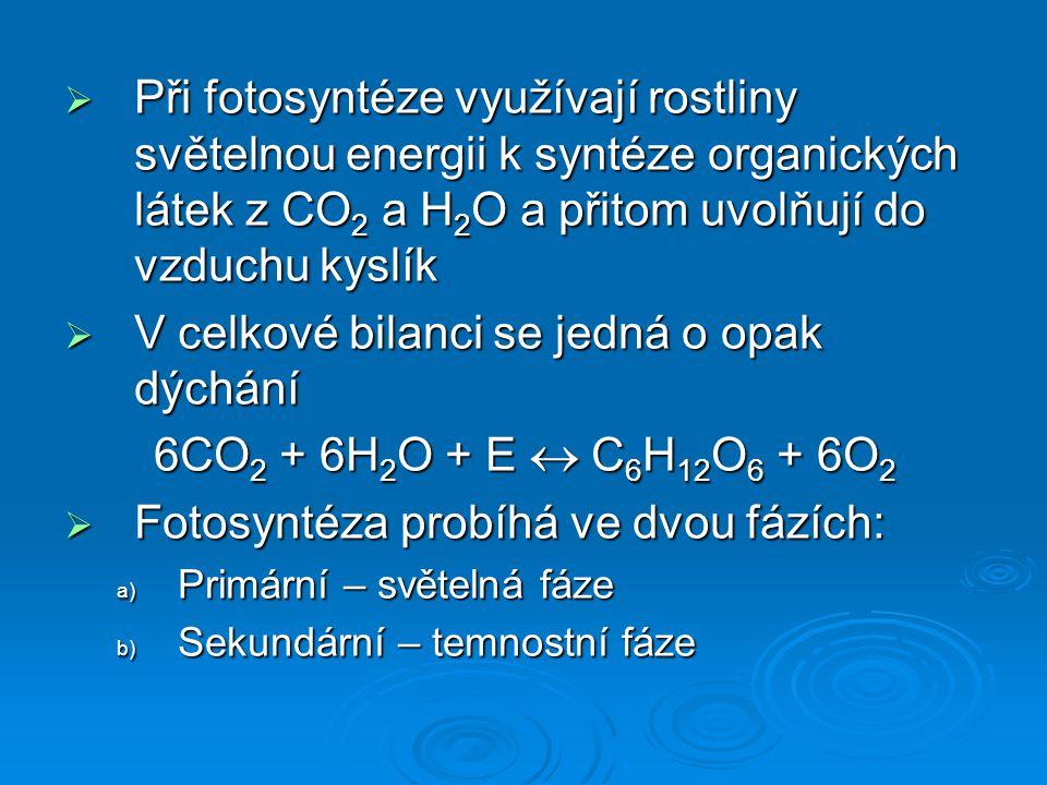  Při fotosyntéze využívají rostliny světelnou energii k syntéze organických látek z CO 2 a H 2 O a přitom uvolňují do vzduchu kyslík  V celkové bila