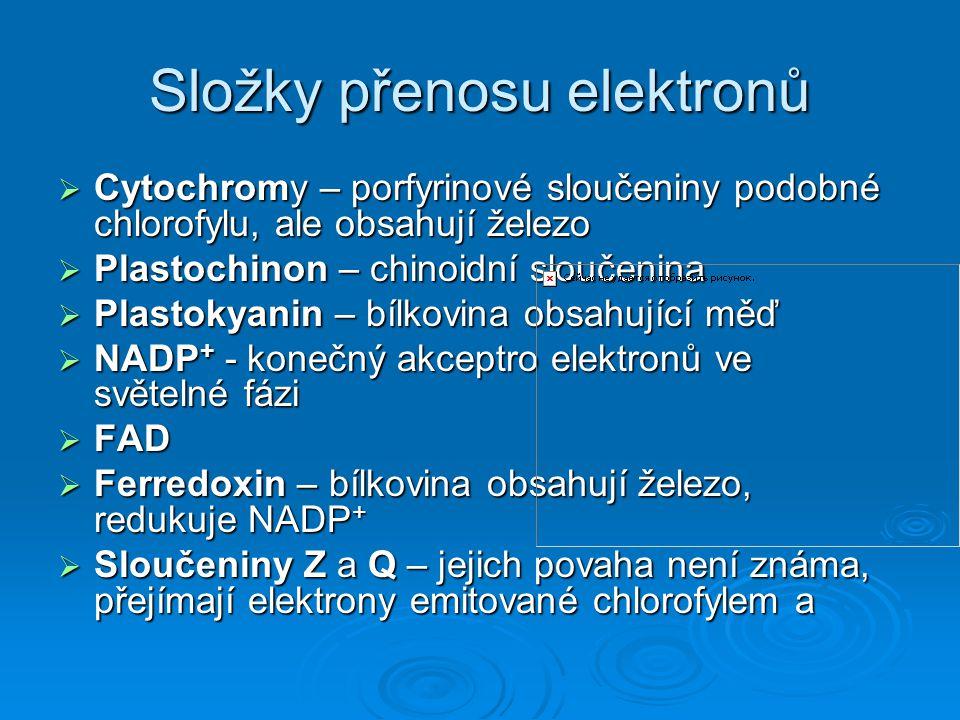 Složky přenosu elektronů  Cytochromy – porfyrinové sloučeniny podobné chlorofylu, ale obsahují železo  Plastochinon – chinoidní sloučenina  Plastok