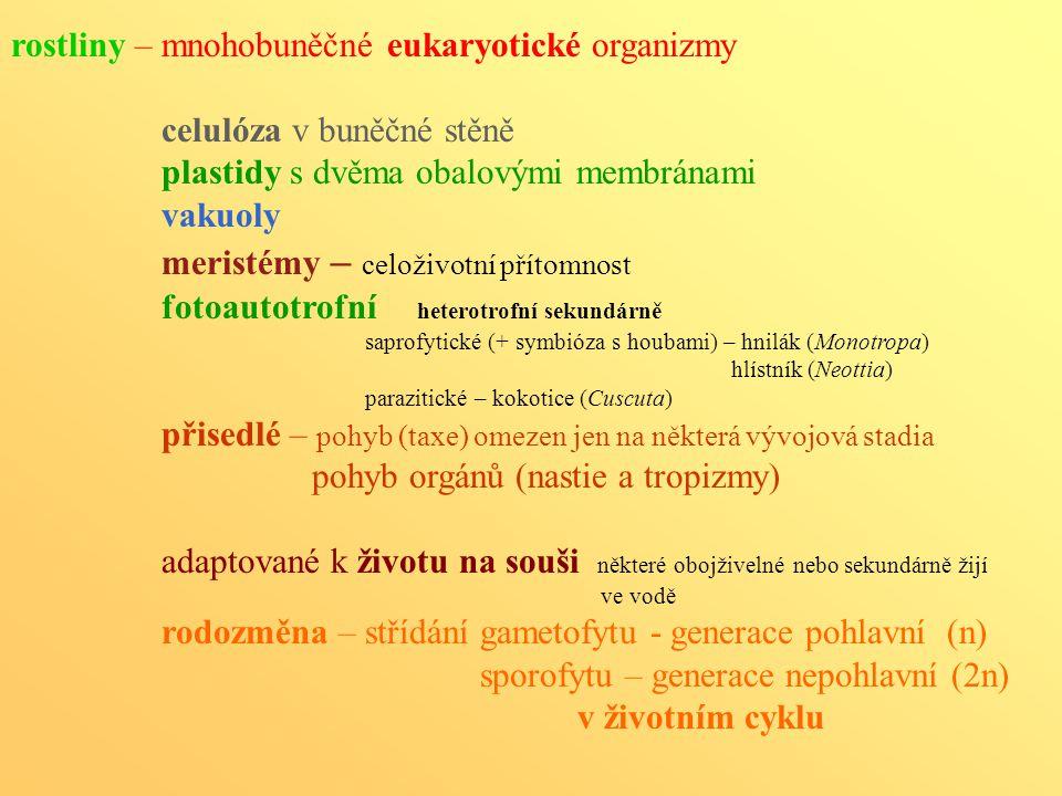rostliny – mnohobuněčné eukaryotické organizmy celulóza v buněčné stěně plastidy s dvěma obalovými membránami vakuoly meristémy – celoživotní přítomno