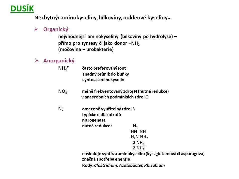 DUSÍK Nezbytný: aminokyseliny, bílkoviny, nukleové kyseliny…  Organický nejvhodnější aminokyseliny (bílkoviny po hydrolyse) – přímo pro syntesy či ja