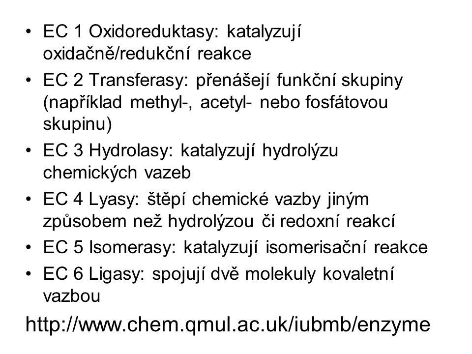 EC 1 Oxidoreduktasy: katalyzují oxidačně/redukční reakce EC 2 Transferasy: přenášejí funkční skupiny (například methyl-, acetyl- nebo fosfátovou skupi