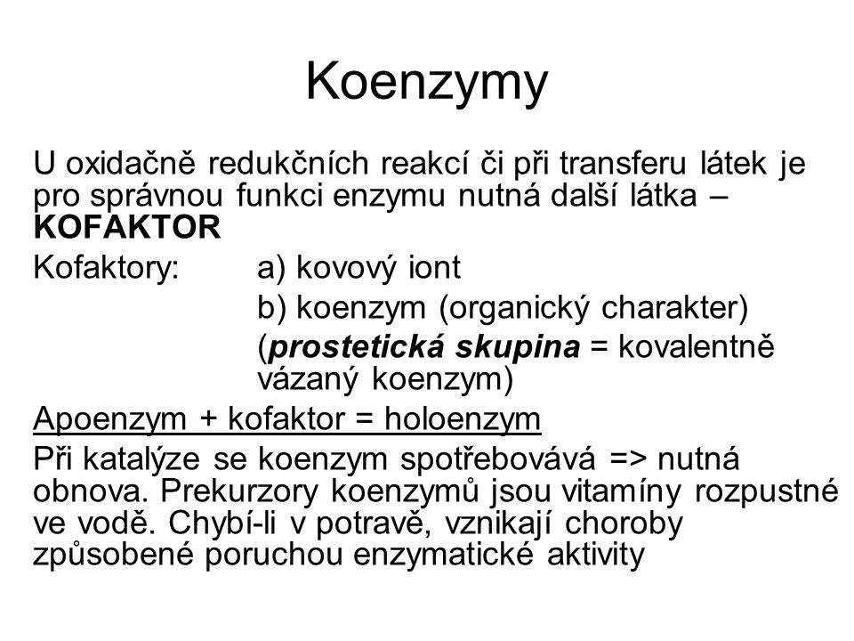Koenzymy U oxidačně redukčních reakcí či při transferu látek je pro správnou funkci enzymu nutná další látka – KOFAKTOR Kofaktory: a) kovový iont b) k
