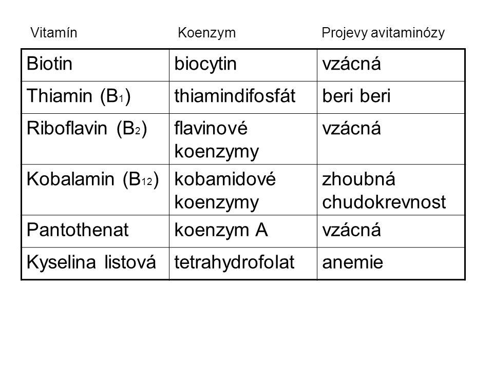 Biotinbiocytinvzácná Thiamin (B 1 )thiamindifosfátberi Riboflavin (B 2 )flavinové koenzymy vzácná Kobalamin (B 12 )kobamidové koenzymy zhoubná chudokr