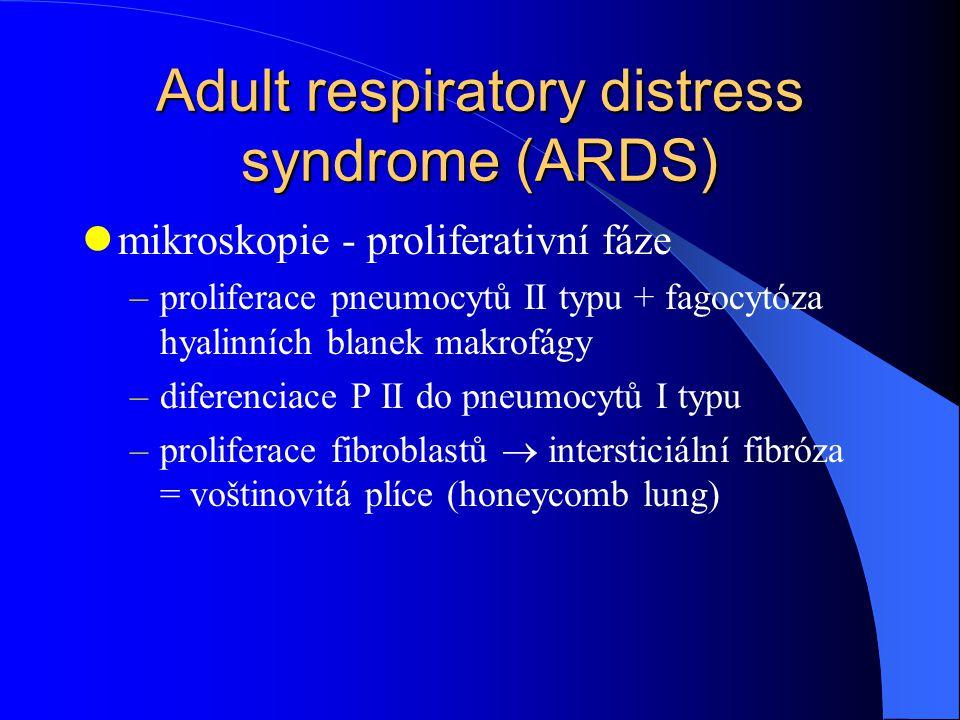 Adult respiratory distress syndrome (ARDS) mikroskopie - proliferativní fáze –proliferace pneumocytů II typu + fagocytóza hyalinních blanek makrofágy –diferenciace P II do pneumocytů I typu –proliferace fibroblastů  intersticiální fibróza = voštinovitá plíce (honeycomb lung)
