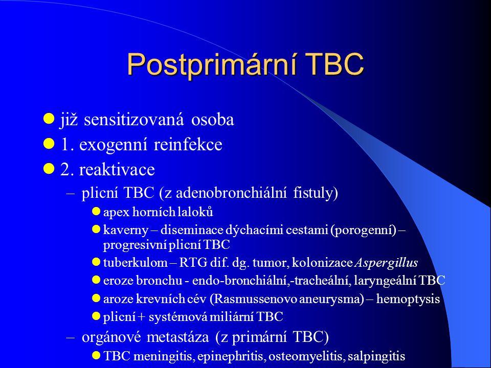 Postprimární TBC již sensitizovaná osoba 1. exogenní reinfekce 2. reaktivace –plicní TBC (z adenobronchiální fistuly) apex horních laloků kaverny – di