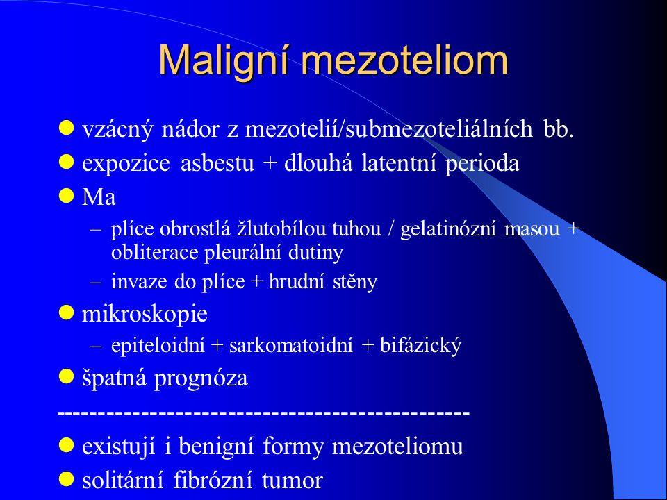Maligní mezoteliom vzácný nádor z mezotelií/submezoteliálních bb. expozice asbestu + dlouhá latentní perioda Ma –plíce obrostlá žlutobílou tuhou / gel