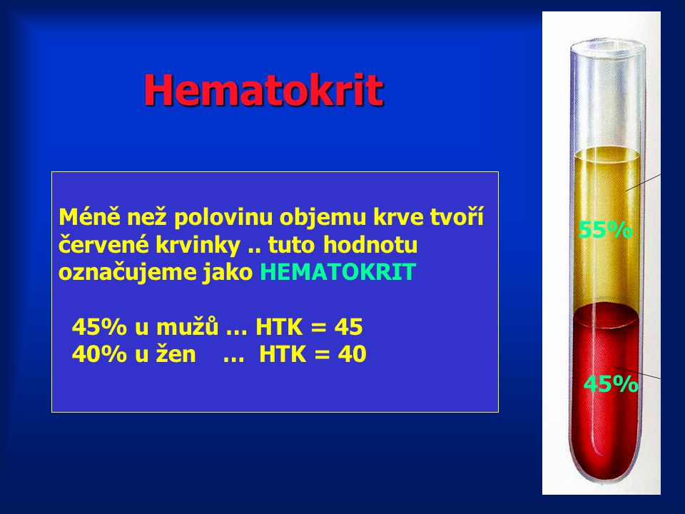 Méně než polovinu objemu krve tvoří červené krvinky..