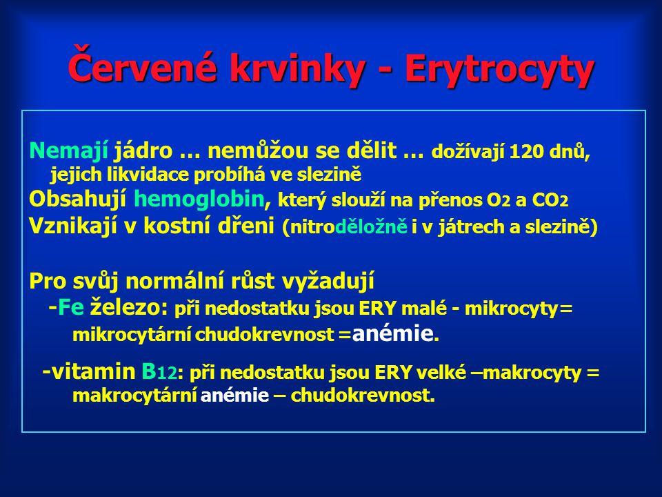 Červené krvinky - Erytrocyty Nemají jádro … nemůžou se dělit … dožívají 120 dnů, jejich likvidace probíhá ve slezině Obsahují hemoglobin, který slouží na přenos O 2 a CO 2 Vznikají v kostní dřeni (nitroděložně i v játrech a slezině) Pro svůj normální růst vyžadují -Fe železo: při nedostatku jsou ERY malé - mikrocyty= mikrocytární chudokrevnost = anémie.